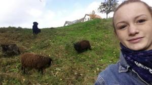 Selfie mit Schafen